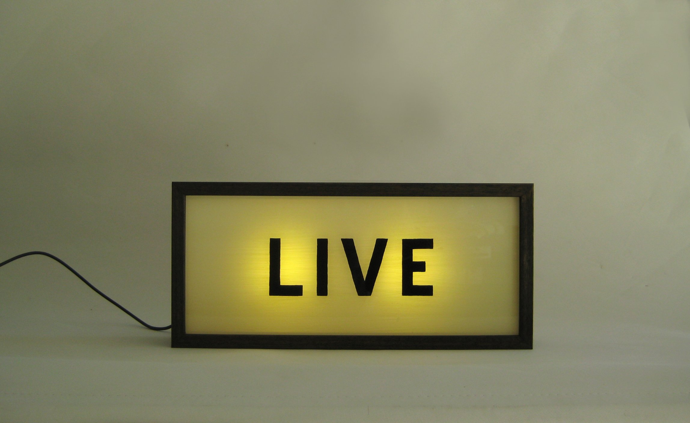 custom hand painted signs LIVE wooden light box